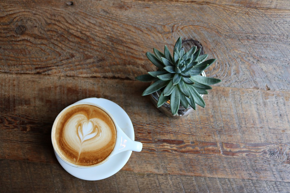coffee and succulent